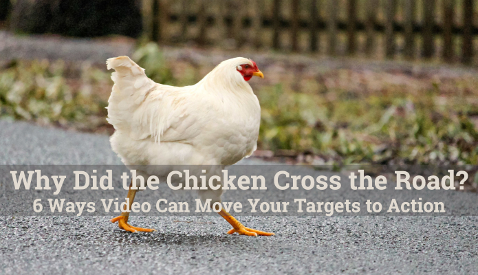 Why Did the Chicken Cross the Road? 6 Ways Video Can Move Your Targets to Action