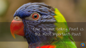 Your USP is the most important point