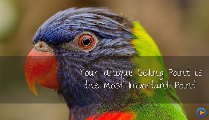 Why Your Unique Selling Point Is … The Most Important Point